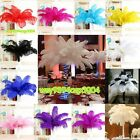 NEW 5 100 pcs High Quality natural OSTRICH FEATHERS 15 55cm 6 22inch Fashion