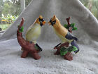 ORIOLE ON BRANCH BIRD FIGURINE - SET OF 2
