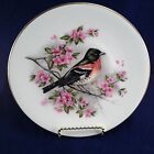 Oriole with Cherry Blossoms,Royal Worcester Fine Bone China Plate,Spring,8.5
