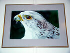 Original Watercolor Painting Gyrfalcon Signed Vernon Washington Framed /Matted