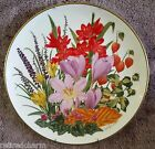 ❤️1978 Franklin Porcelain Flowers of the Year Plate Coll NOVEMBER by Wedgwood❤️