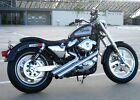 Radii Chrome 2 Viper Sideshots Drag Exhaust Pipes 86 03 Harley Sportster Custom