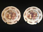 Windsor Fruit Windsor Ware by Johnson Bros. Set of 2, 10