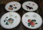 Queen's Fine Bone China HOOKER'S FRUIT Tea Plates SET of 4 / NEW /8 5/8