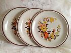 3 Hearthside Stoneware Dinner Plates Casual Elegance Chablis Orange Gold Brown