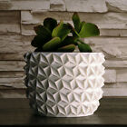 Bonsai Planter Pot Exquisite Zen Decor Faceted Geometric Pot 3D Printed