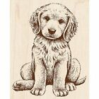 Rubber Stamp w Wood Handle Baby Retriever Puppy Dog Golden Doggy