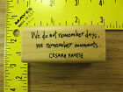 Rubber Stamp We Remember Moments Pavese Quote Inkadinkado Stampinsisters 3480