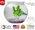 Crystal Clear Plastic Fish Bowl Round 1 Gallon