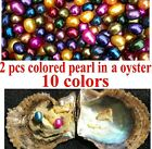 FRESHWATER OYSTER TWINS SKITTLE DROP 2 PEARLS 1 OYSTER