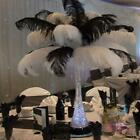 20 PCS Wholesale Quality White and Black Color Natural OSTRICH FEATHERS 12 14