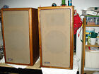 Vintage The Advent Loudspeakers New Large A4 A3 Fried Egg Tweeters