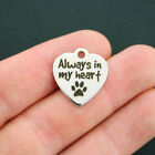 Dog Stainless Steel Charm - Always In My Heart - Quantity Options - Bfs656