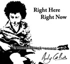ANDY COLLINS - RIGHT HERE, RIGHT NOW USED - VERY GOOD CD
