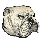 English Bulldog Iron On Patch 9 Dog Face Art Fabric Embroidered Shirt Clothes