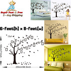 Living Room  Bedroom Beautiful Family Tree Wall Decal with Quote Decor Sticker
