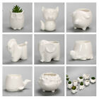 Succlent cute ceramic animal planter pot for cactusbonsai home decor 8pcs set