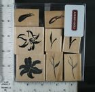 CTMH DOTS rubber stamp set BRUSHSTROKE FLOWERS lily