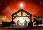 10x8FT Vinyl Xmas Christian Jesus Nativity Manger Studio Backdrop Background LB