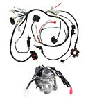 GY6 125cc 150CC Carburetor + Wiring Harness for Moped Scooter Go Kart ATV Roketa