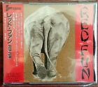 RED FUN s/t CD PCCY00652 (Japan) Like New