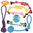 BK Puppy  Dog Play Toys for Small Dogs and Puppies Set of 7