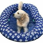 Ginkago Inflatable Pool Float for Adult Dogs and Puppies Large Contemporary M