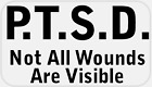 PTSD Not All Wounds are Visible 25 Stickers Pack 225 x 125 inches Label