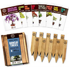 Bonsai Tree Seeds Kit 8 Popular Varieties Mini Bonsai Trees+Bamboo Plant Markers