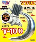 NEW POWER 2 STROKE 80cc 100cc MOTORIZED BIKE ENGINE ONLY FOR KITS MOPED SCOOTER