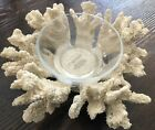 Pottery Barn Snack Bowl Serving Coral Candy Beach Shell New Appetizer Glass