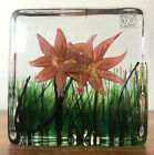 Vintage Isle of Wight Blown Glass Flower Block Art 2002 England Stunning 4