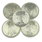 Lot of 5 1922 1925 Peace Silver Dollars AU to Choice Almost Uncirculated Mixed