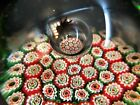 Vintage Art Glass Paperweight Millefiori Large Bubble in Center Red White Green