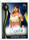 2019 Topps WWE NXT Wrestling Cards 25