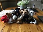 beanie babies set of dogs including spot, rescue, wrinkles, bones