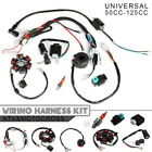50CC 125CC Mini ATV Complete Wiring Harness CDI STATOR 6 Coil Pole Ignition