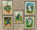 1911 T3 Turkey Red Cabinets Baseball Cards 42
