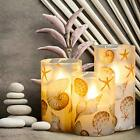 LED Flameless Candles Blinks with Timer Ocean Theme Shell Series Glass Shell