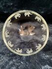 Stephen SCHLANSER Elephant Bowl Stunning 7 Glass Bowl With Minor Scratches