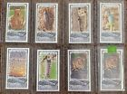 Unannounced 2014 Topps Allen & Ginter Baseball Mini Insert Guide 22