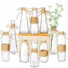 Glass Vases Set of 10 Clear Glass Flower Vase with Rope Design and Differing