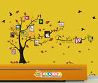 Wall Decal Sticker Removable Photo Frame Tree Family Quote 39H x 80W 2 COLORS