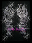 LARGE Angel Wings Rhinestone Iron on Transfer Bling Hot