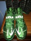 Boston Celtics Brandon Bass Game Used LeBron Soldier 7's PE Shoes Photo Matched