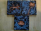 Decorative Tile Blue Tropical Design Tiles Palm Tree Lizard Geco and Fish Design