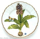 ANNA WEATHERLEY, FLOWERS OF YESTERDAY NARCISSUS DINNER PLATE, NEW