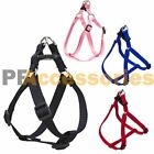 Small Dog Cat Pet Control Harness Step in Walk Collar Safety Strap Vest Med
