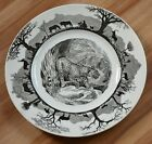 Wedgwood Dinner Plate From England, Kruger National Park - Leopard