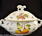 ANNA WEATHERLEY, HOOKER FRUIT, QUINCE COVERED TUREEN / CASSEROLE DISH, PRISTINE